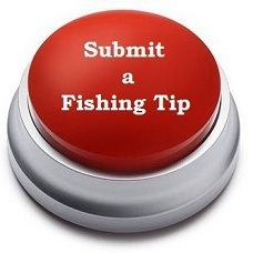 Submit your Fishing Tips to Us