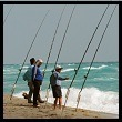 Photo of Surf Fishing